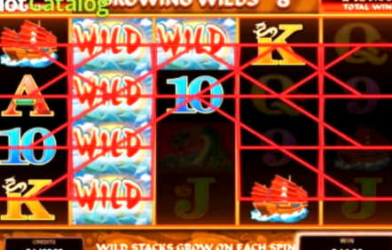 €465 Free Casino Tournament at Leo Dubai Casino